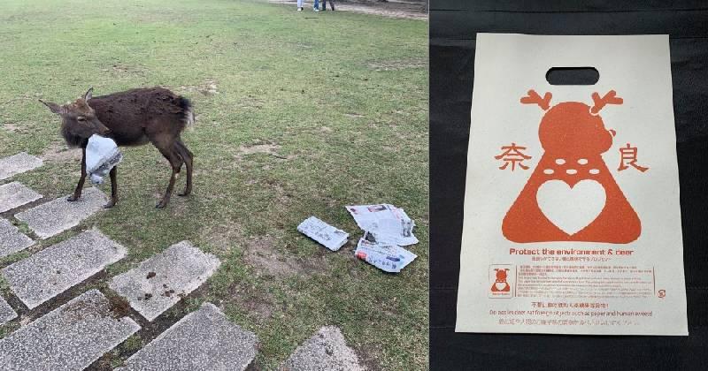 Plastique comestible pour cerfs du parc de Nara
